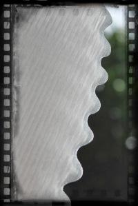 Fin close-up